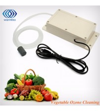 ABS Ozone Generator Food Air Sterilizer