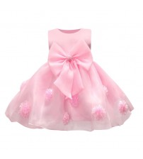 Baby Girl Dress Lace Flower Around
