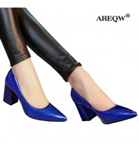 Pointed Shallow High Heels Woman Shoes