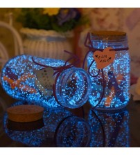 10g DIY Glow In The Dark Luminous Star Noctilucent Sand Paint Fluorescent Party Wishing Bottle Fluorescent Particles Kids Gifts