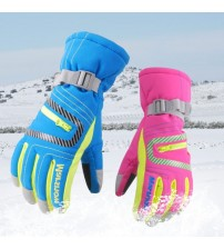 Professional Ski Gloves