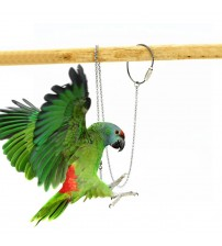 1 Pcs Pet Parrot Leg Ring Ankle Foot Chain Bird Ring Outdoor Flying Training Activity Opening Stand Accessories Bird Supplies|Bird Foot Rings|   -